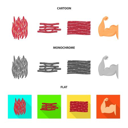 Vector design of fiber and muscular logo. Set of fiber and body vector icon for stock.