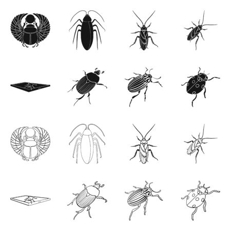 Vector design of insect and beetle sign. Collection of insect and halloween vector icon for stock.