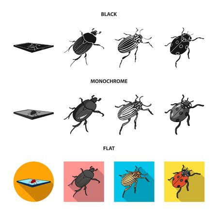 Isolated object of insect and beetle icon. Set of insect and halloween stock symbol for web.