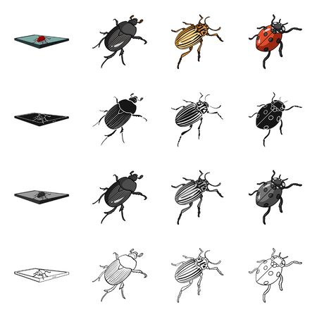 Isolated object of insect and beetle symbol. Collection of insect and halloween stock vector illustration.