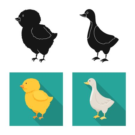 Vector illustration of breeding and kitchen  logo. Collection of breeding and organic  vector icon for stock. Illustration