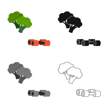 Isolated object of broccoli  and vegetable sign. Set of broccoli  and green stock vector illustration.