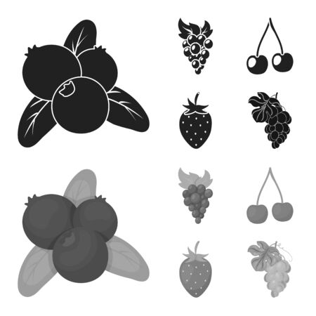 Vector illustration of berry and fruit logo. Set of berry and redberry  vector icon for stock. Ilustrace