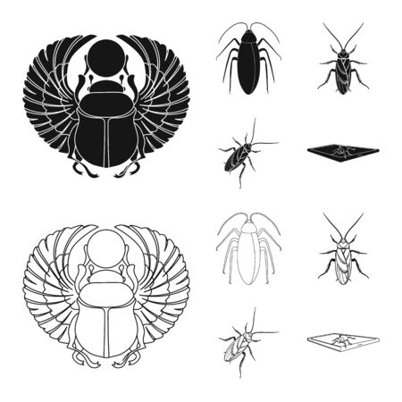 Vector design of insect and beetle symbol. Set of insect and halloween stock vector illustration.