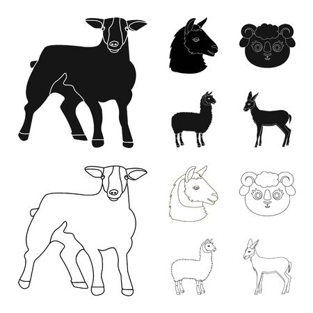 Vector illustration of sheep and goat logo. Set of sheep and happy  stock vector illustration.