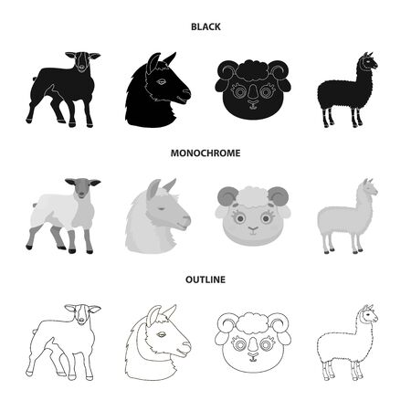 Isolated object of sheep and goat icon. Set of sheep and happy  stock vector illustration.