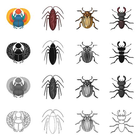 Vector illustration of insect and beetle icon. Collection of insect and halloween stock vector illustration.