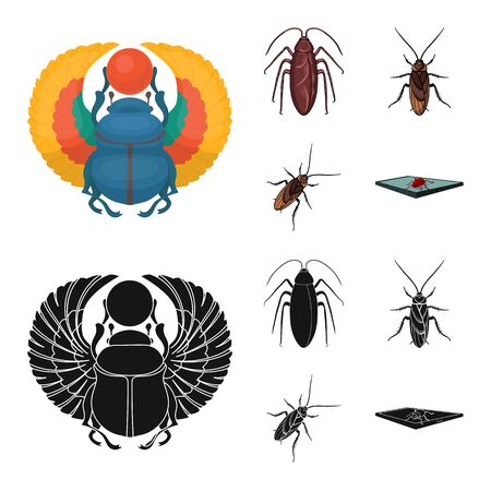 Isolated object of insect and beetle sign. Collection of insect and halloween stock symbol for web. Çizim