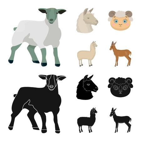 Vector illustration of sheep and goat icon. Collection of sheep and happy  vector icon for stock. Çizim