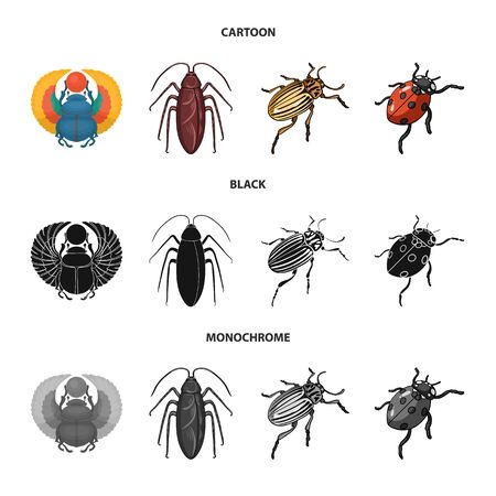 Isolated object of insect and beetle symbol. Set of insect and halloween vector icon for stock.