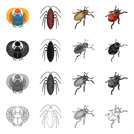 Isolated object of insect and beetle symbol. Set of insect and halloween stock symbol for web.