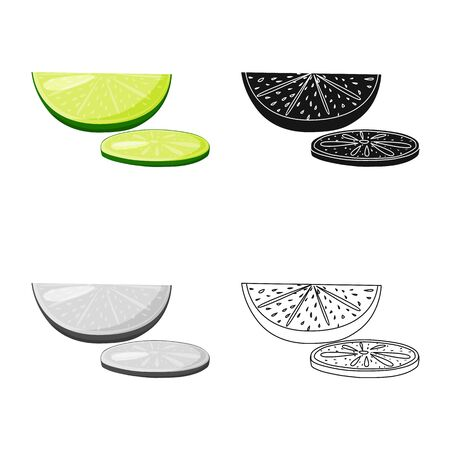 Vector illustration of lime  and green  icon. Set of lime  and slice   vector icon for stock.