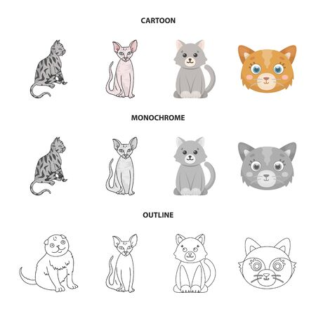 Isolated object of pet and sphynx sign. Collection of pet and fun stock symbol for web.  イラスト・ベクター素材