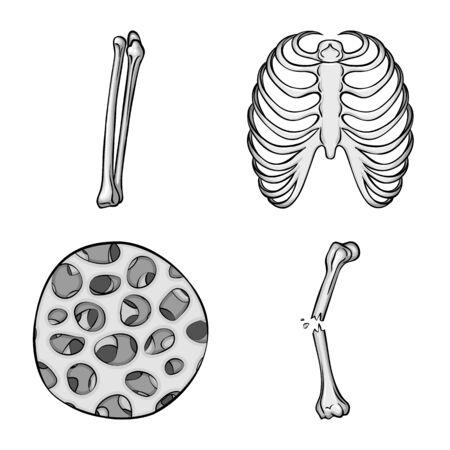 Vector design of biology and medical symbol. Collection of biology and skeleton vector icon for stock. Ilustração Vetorial
