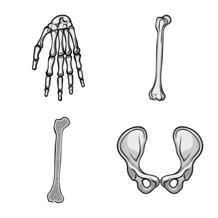 Vector illustration of biology and medical icon. Collection of biology and skeleton vector icon for stock.