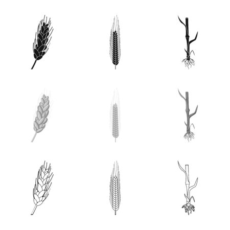 Vector illustration of agriculture and farming icon. Collection of agriculture and plant stock symbol for web.