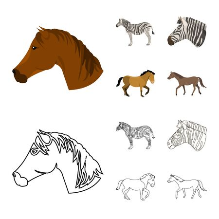 Vector design of trot and running sign. Set of trot and clipart vector icon for stock. 向量圖像