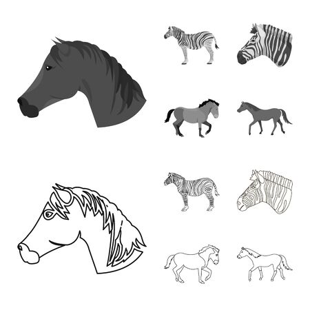 Vector illustration of trot and running sign. Collection of trot and clipart vector icon for stock. 版權商用圖片 - 125599962