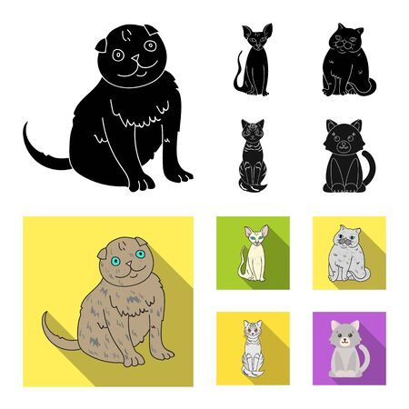 Vector design of pet and sphynx icon. Set of pet and fun vector icon for stock.