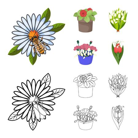 Isolated object of spring and wreath logo. Collection of spring and blossom stock symbol for web.