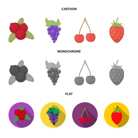 Vector illustration of berry and fruit icon. Collection of berry and redberry stock symbol for web.