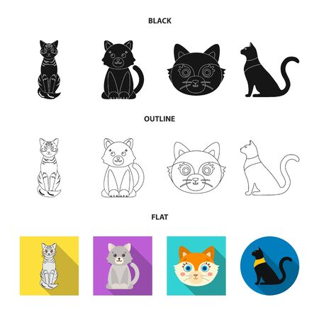 Isolated object of pet and sphynx logo. Set of pet and fun stock symbol for web. Illustration