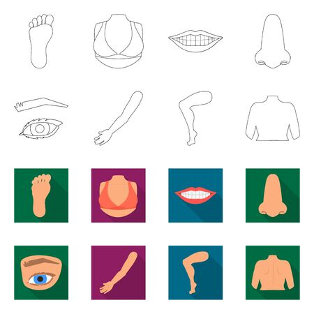 Isolated object of body and part icon. Collection of body and anatomy stock symbol for web.