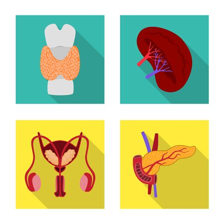Vector illustration of human and health icon. Collection of human and scientific vector icon for stock. Illustration