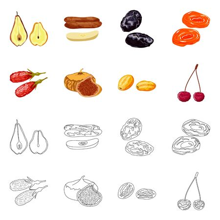 Vector illustration of food and raw sign. Collection of food and nature vector icon for stock.