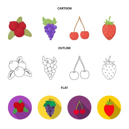 Isolated object of berry and fruit icon. Set of berry and redberry stock vector illustration.