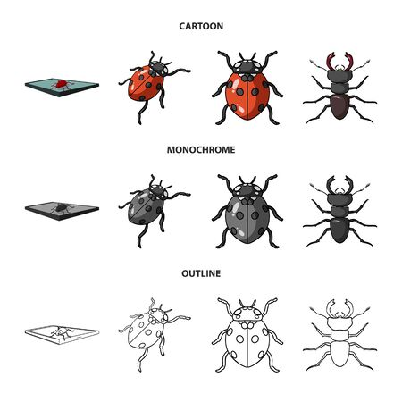 Vector design of insect and beetle sign. Set of insect and halloween vector icon for stock.