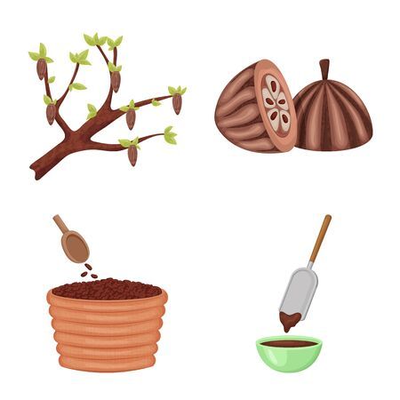 Vector illustration of cocoa and beans. Collection of cocoa and sweetness stock vector illustration. Foto de archivo - 126377865