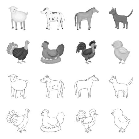 Isolated object of breeding and kitchen icon. Set of breeding and organic stock symbol for web. Ilustração