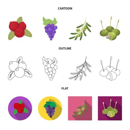 Isolated object of berry and fruit symbol. Set of berry and redberry stock vector illustration.