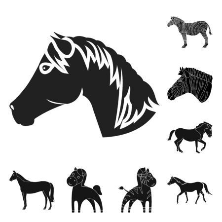 bitmap design of trot and running symbol. Collection of trot and clipart bitmap icon for stock.