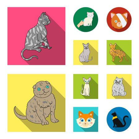 Isolated object of pet and sphynx icon. Collection of pet and fun bitmap icon for stock. Imagens