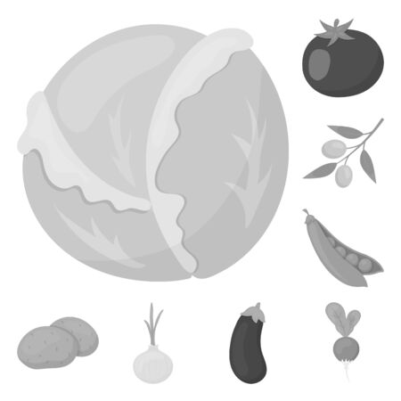 Different kinds of vegetables monochrome icons in set collection for design. Vegetables and vitamins bitmap symbol stock web illustration. 스톡 콘텐츠