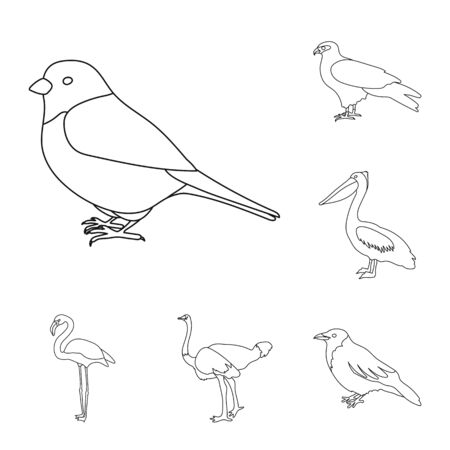 Types of birds outline icons in set collection for design. Home and wild bird bitmap symbol stock web illustration. Banco de Imagens