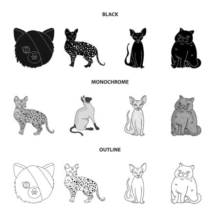 Vector design of pet and sphynx icon. Collection of pet and fun vector icon for stock.