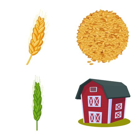 Isolated object of wheat and corn sign. Set of wheat and harvest vector icon for stock.