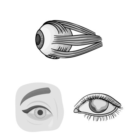 bitmap illustration of medical and eyeball sign. Collection of medical and optical stock symbol for web.