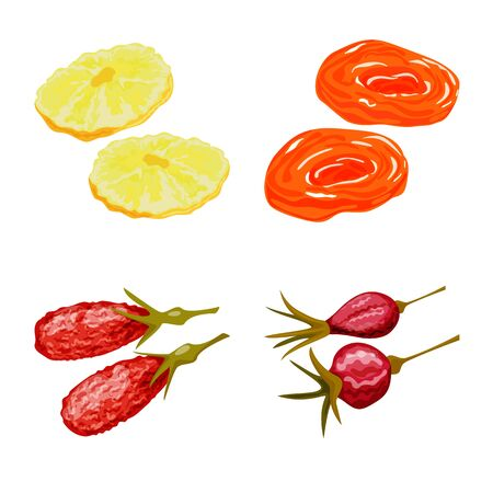Isolated object of fruit and dried. Set of fruit and food vector icon for stock. Illustration