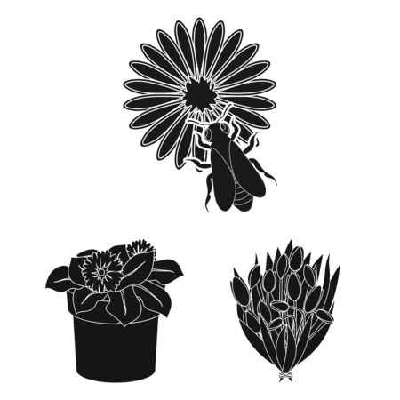 Isolated object of spring and wreath sign. Set of spring and blossom bitmap icon for stock.