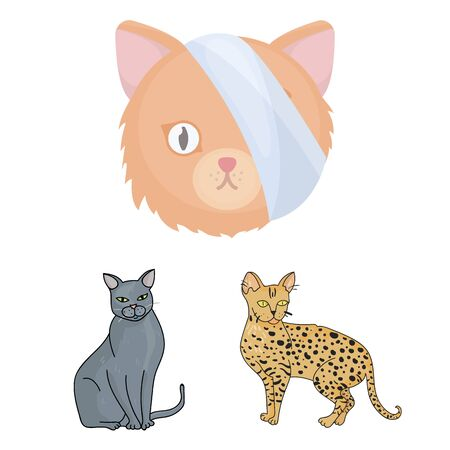 bitmap illustration of pet and sphynx icon. Set of pet and fun bitmap icon for stock.