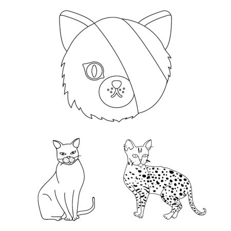 bitmap design of pet and sphynx icon. Set of pet and fun stock bitmap illustration.