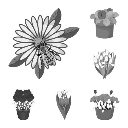 bitmap design of spring and wreath symbol. Collection of spring and blossom bitmap icon for stock.