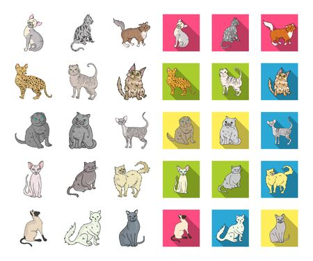 Breeds of cats cartoon,flat icons in set collection for design. Pet cat bitmap symbol stock web illustration.