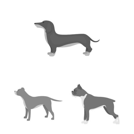 bitmap design of cute and puppy icon. Collection of cute and animal stock symbol for web. Stock Photo