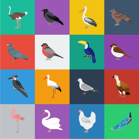 Types of birds cartoon icons in set collection for design. Home and wild bird bitmap symbol stock web illustration. Banco de Imagens