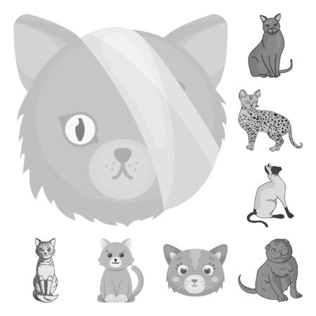 bitmap illustration of pet and sphynx logo. Set of pet and fun bitmap icon for stock. Imagens